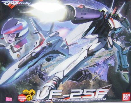 VF25F00.JPG